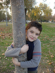 Sam Tree Hugger