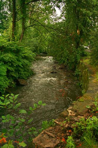 The Glen in Glen Ridge