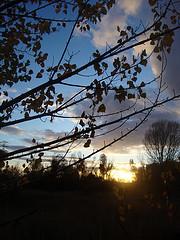 Sunsetwriting6