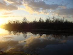 Riverofreflection