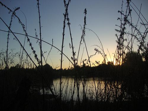 Medium wilderness sunset