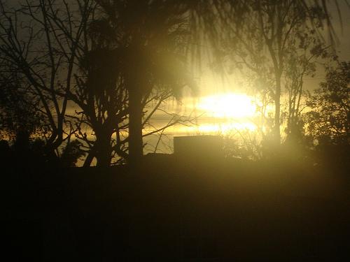 Sun tells me