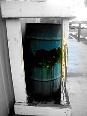 Transform rusty trash can into life