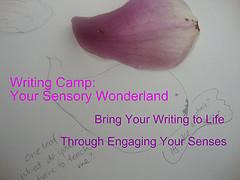 Small Sensory Wonderland Image