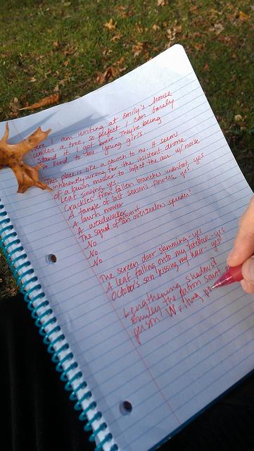 Emilyfallwritingnotebook