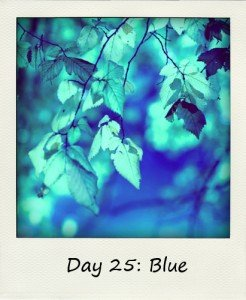 Blue Leaves-246x300