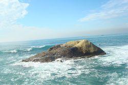 Dana point jetty view