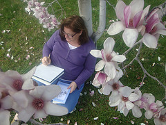 Writing Plein Air Under a Tulip Magnolia Tree