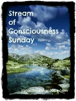 Jana's Thinking Place is the Host of Stream of Consciousness Sunday