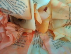 Dye paper 2