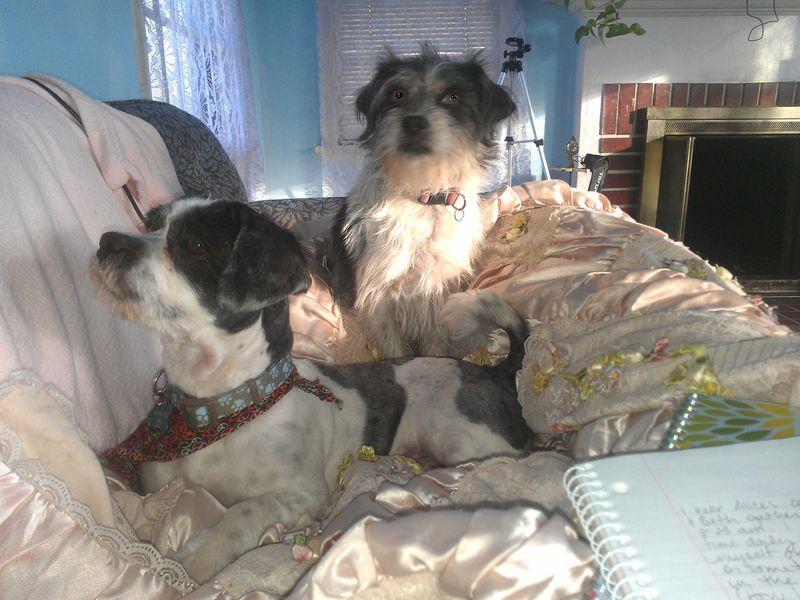 Beth and Walt sit