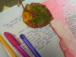 Writing at Dagny's