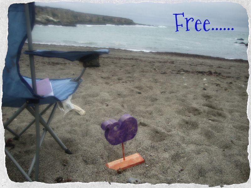 Free....purple5