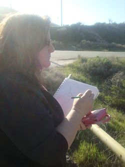 Writing plein air