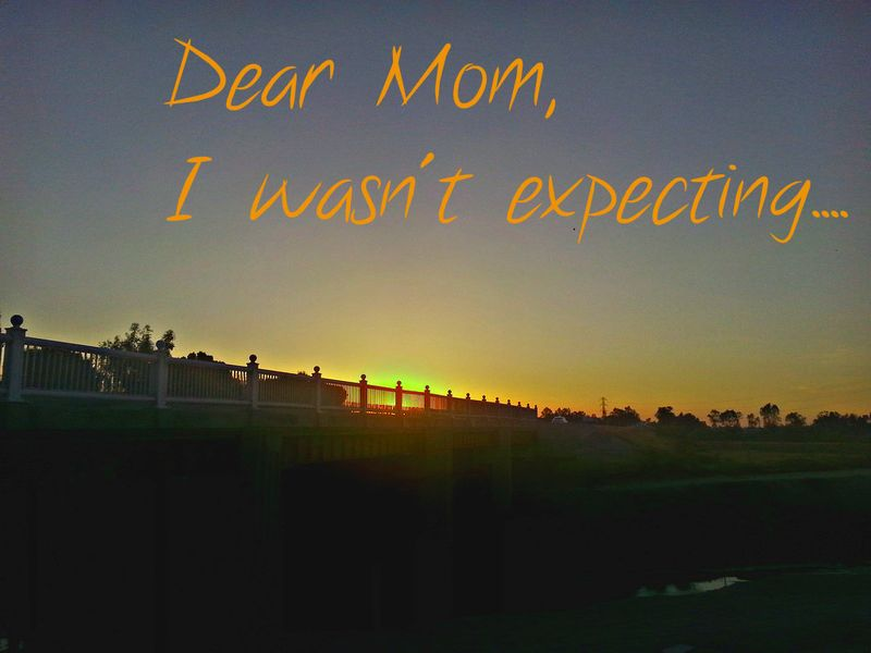 Sunset homelessness dear mom