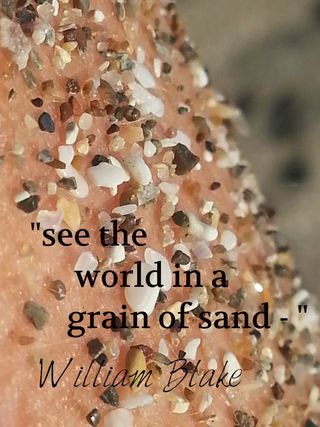 "William Blake quote: ""See the world in a grain of sand"""