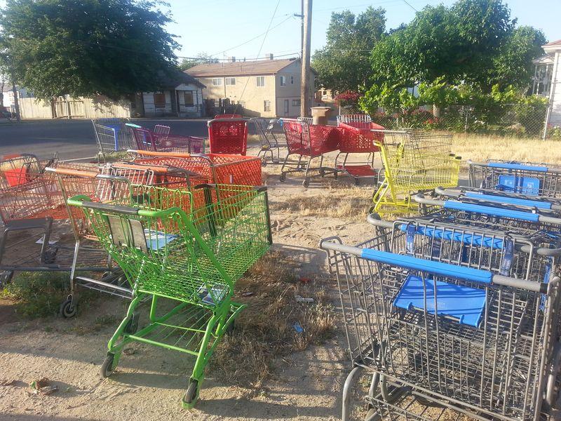 Wg shopping cart 1