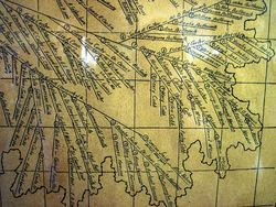 Leaf from a Family Tree via Flickr