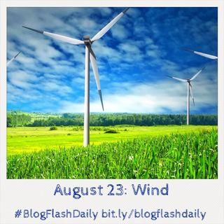 Blogflashdaily aug 23