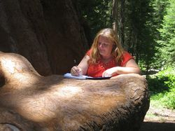 Writing closer up on sequoia