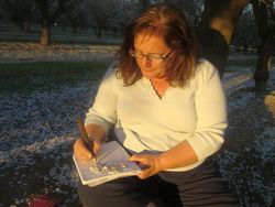 Writing the sunset in blossoms