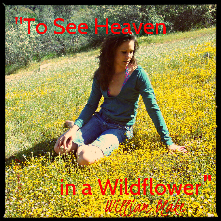 Heaven in a wildflower edit