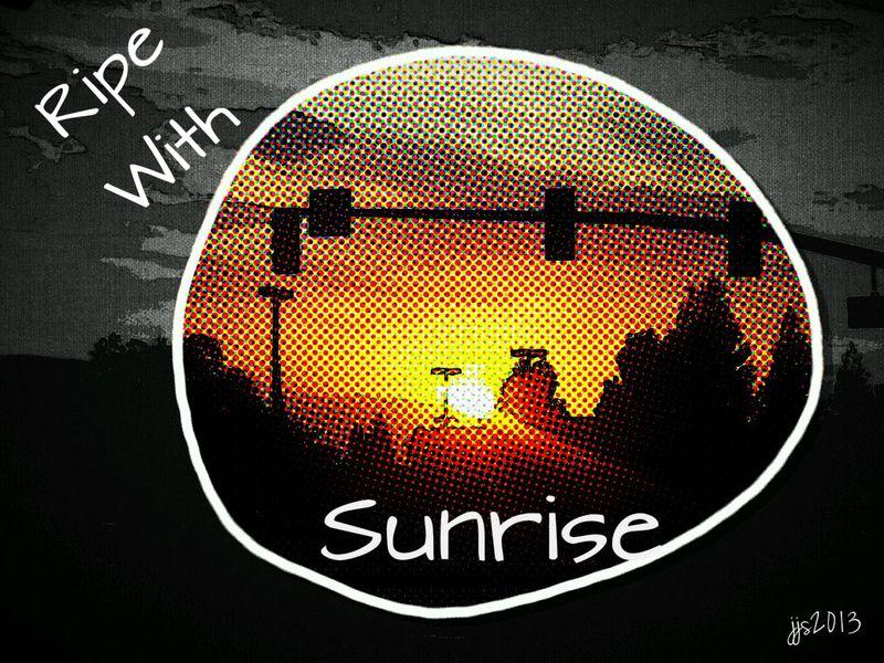 Ripe with Sunrise