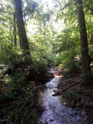 Creek at Ellanor C. Lawrence Park: Leaving space for delights & surprises in your travels plans brings big travel bonus adventures!