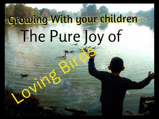 I have spent many years loving birds with my children: the joy just continues to grow.