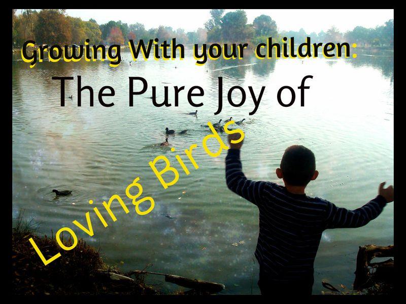 Pure joy of ducks growing