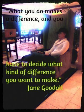 For Your Writing and Creative Inspiration: Questions, List, Image, Prompts & a Jane Goodall Quote