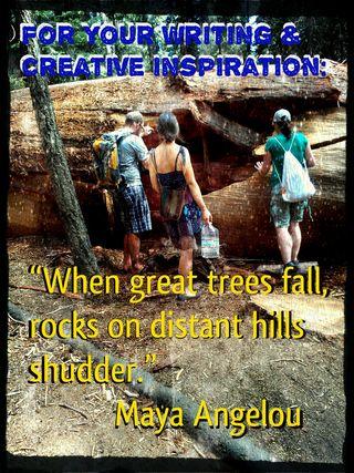 Maya Angelou giant trees fall
