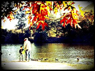 Feeding the Ducks in Hart Park in Autumn