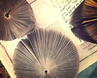 Paperback Novel Sculptures created for Art Every Day Month