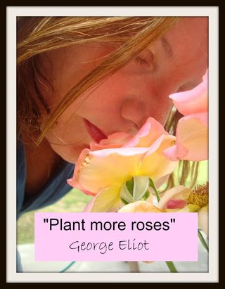 Plant more roses w edits