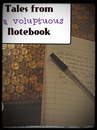 Voluptous notebook tales