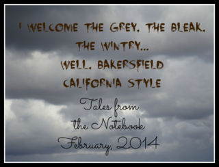 Tales from the Notebook Welcome the grey, the bleak, the wintry