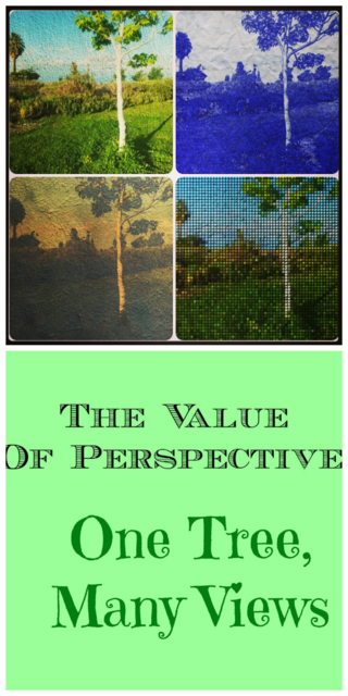 Explore the Value of Perspective: One Tree, Many Views