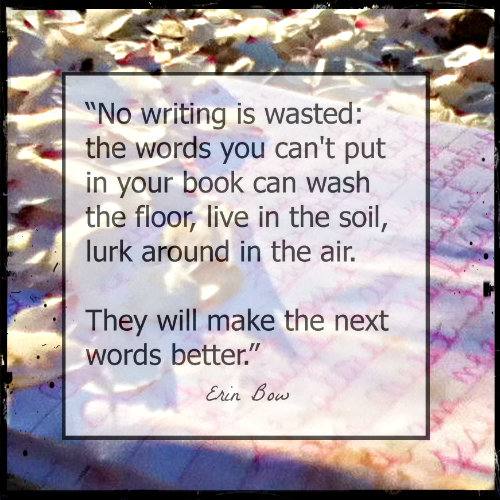 "The Passionate Writer Series: ""No writing is wasted."" Erin Bow"
