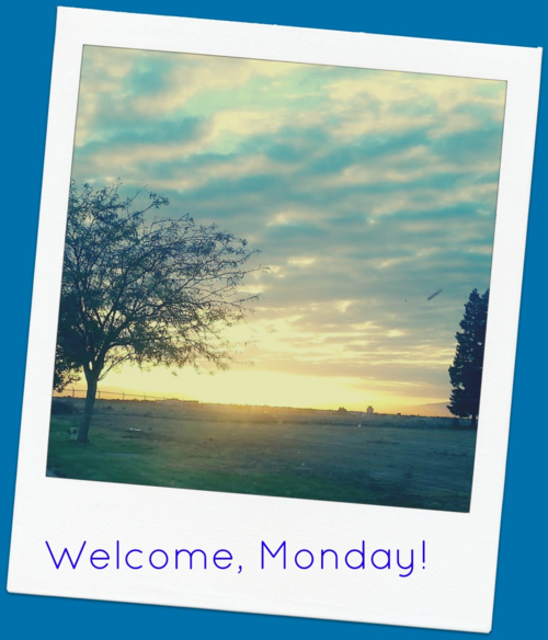 Welcome Monday:A new week, a white canvas, new opportunities to create!