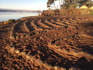 The sunlight hitting the soil and the rocks took my breath away. This is the space where we enter the labyrinth. To pray. To meditate. To listen. At Baywood - Los Osos Labyrinth