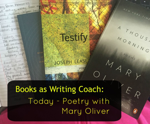 Books As Your Writing Coach: Today, My Session with Mary Oliver (Only She Doesn't Know It!