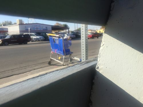 Shopping cart behind the bench