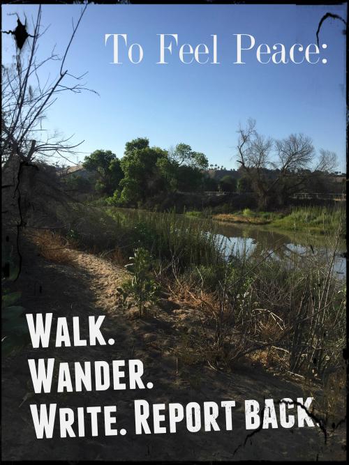 To Feel Peace  Walk Wander Write