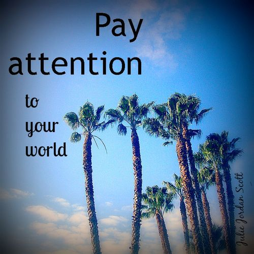 Pay attention to your world