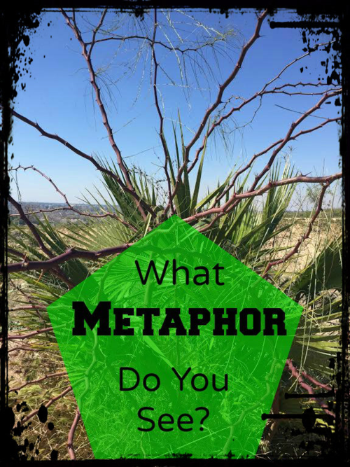 What metaphor do you see? Video and text to inspire you.