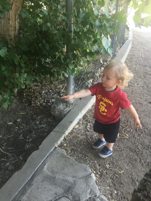 Jaxon says there's a toad granny!