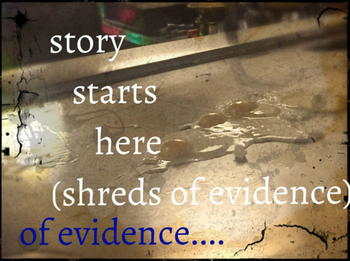 We start our stories with the tiniest scraps of what we think we know... like these....shreds of evidence we make meaning with and from and because of them we....
