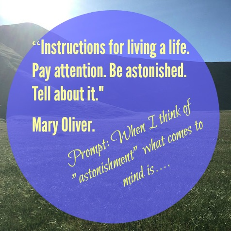Writing prompt from Mary Oliver's poetry by Julie Jordan Scott -