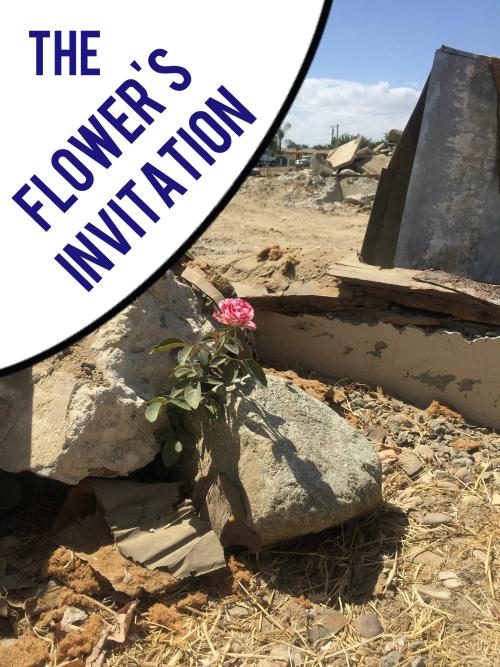 The Flower's Invitation
